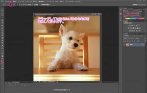 photoshop cs6 切抜き ワンコ