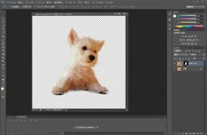 photoshop cs6 切抜き 犬